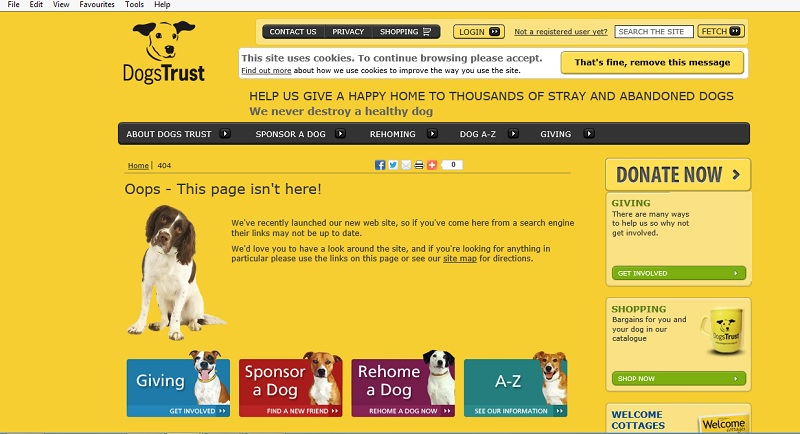 Error message from Dog's Trust - cute dog