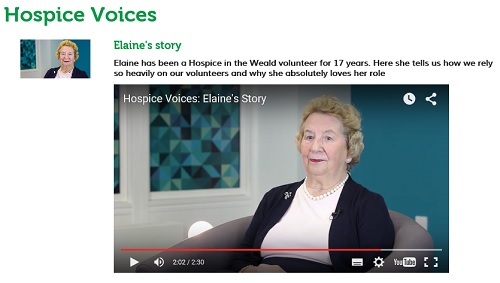 Elaine's story of volunteering for 17 years