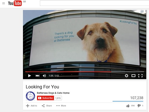 BCDH: billboard showing a cute dog which follows people around a shopping centre
