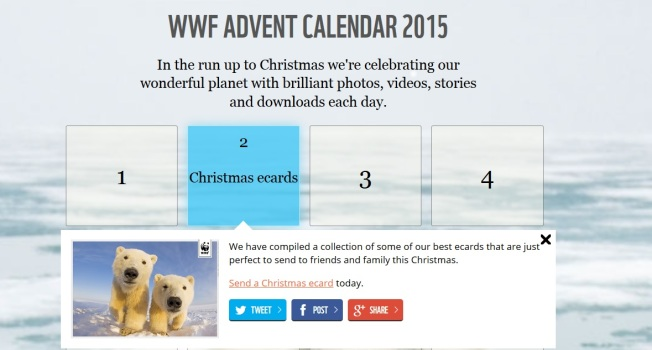 WWF UK's advent calendar