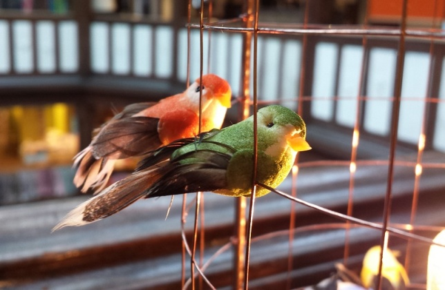Artificial brightly-coloured birds in a cage