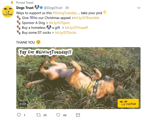 Dogs Trust - 4 ways to give + silly dog video