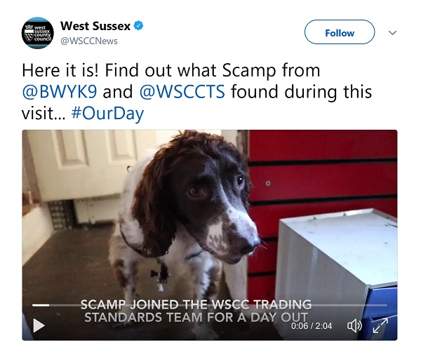 Video of sniffer dog Scamp