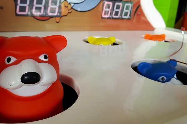 coloured bear heads poking out of a seaside game.