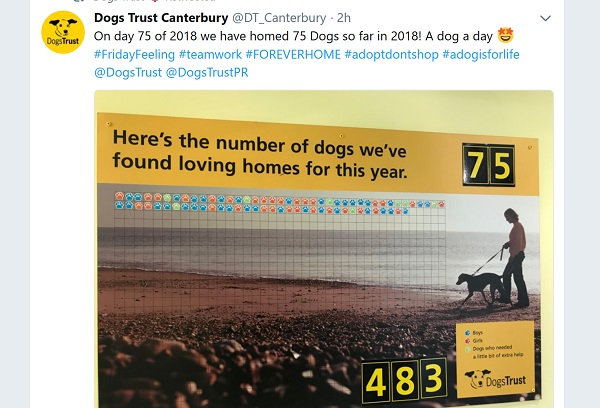 Poster showing pawprints counting up the number of dogs rehomed by Dogs Trust Canterbury in 2018