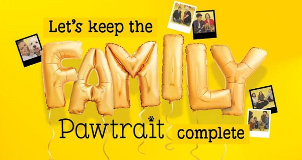 image from Dog's Trust Pawtrait campaign