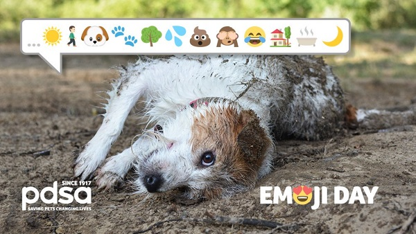 scruffy dog lying on the grass. speech bubble comes out of its mouth filled with emoji including one of paws, tree, poo etc