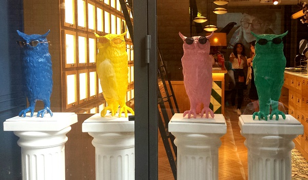 4 plastic owls (blue, yellow, pink, green) wear glasses in a shop window display