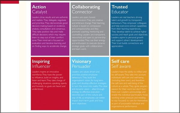 acevo leadership framework