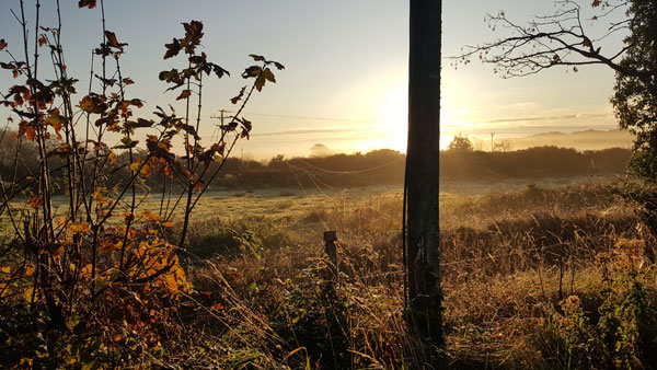 Countryside view - early morning. Orange light.