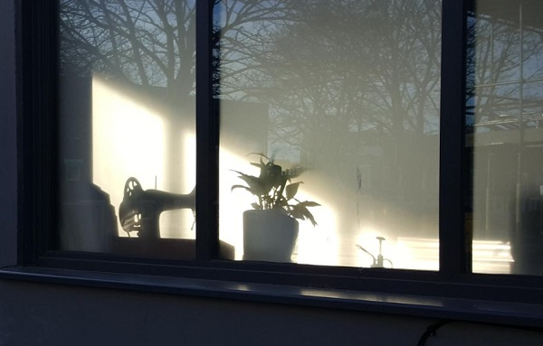 Winter sunlight pouring through a window making a silouette of a sewing machine and a pot plant