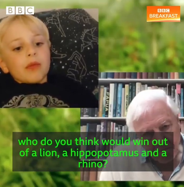 Screenshot from video showing David Attenborough answering a young boy's question